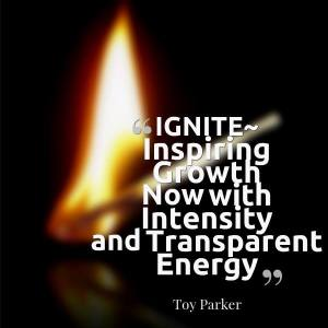 IGNITE by Toy Parker